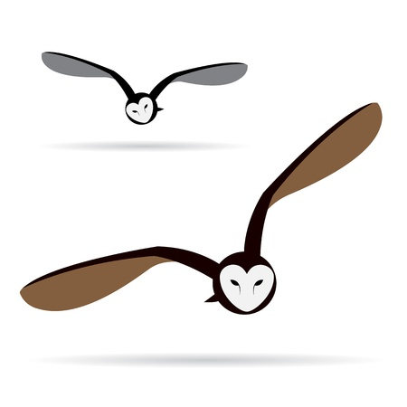 owl cartoon: Vector image of an owl on white background  Illustration