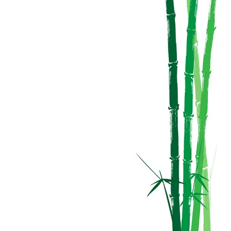 Hand drawn illustration of a bamboo green silhouette against a white background Vector