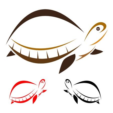 logo poisson: Vecteur d'image d'une tortue sur fond blanc