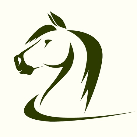 horse riding: head of horse on a white background Illustration