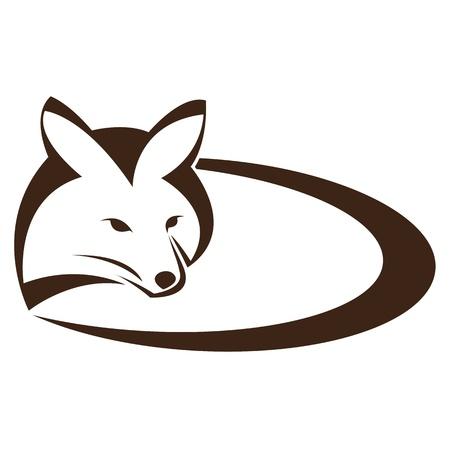 fox face: Vector imagen de un zorro en un fondo blanco