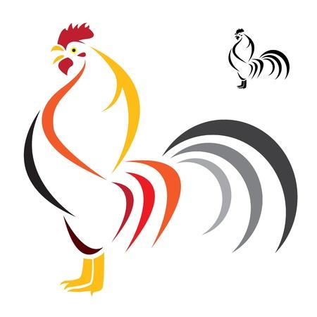 animal cock: Vector immagine di un gallo su sfondo bianco