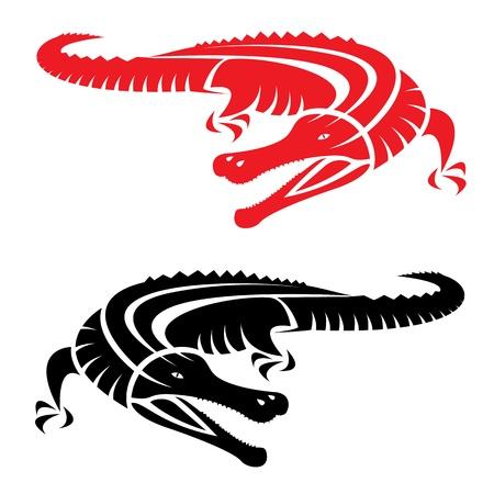cocodrilo: un cocodrilo sobre fondo blanco