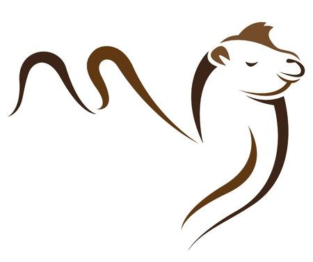 kameel op witte achtergrond Vector Illustratie