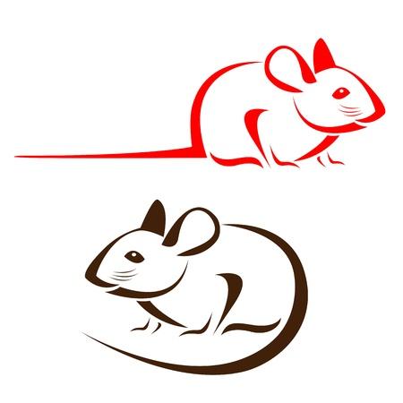 rata: rata en un fondo blanco Vectores