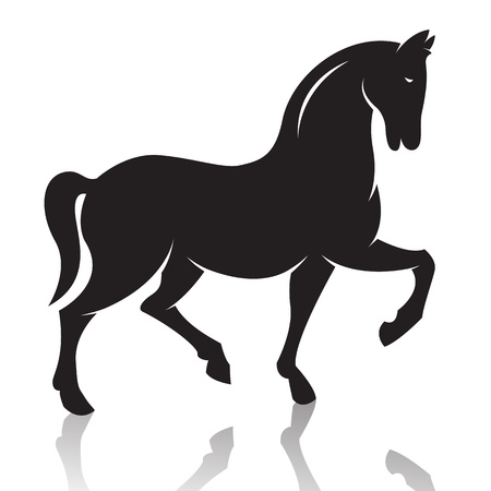 parapente: caballo sobre fondo blanco
