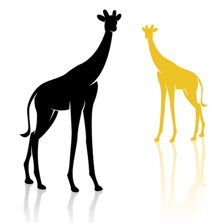 wildlife reserve: giraffe on a white background Illustration