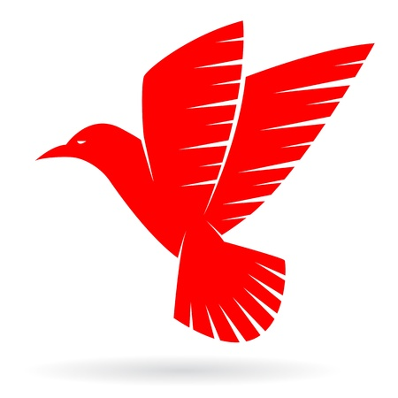 red beak:  bird on white background