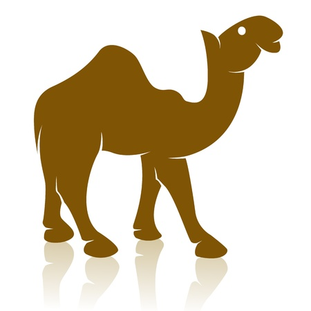 humped: image of an camel on white background