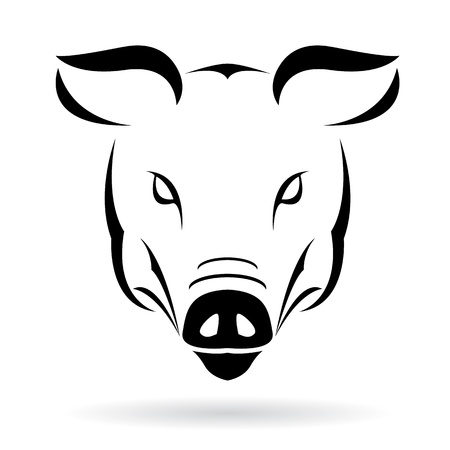 dirty teeth: Vector image of a pig on a white background