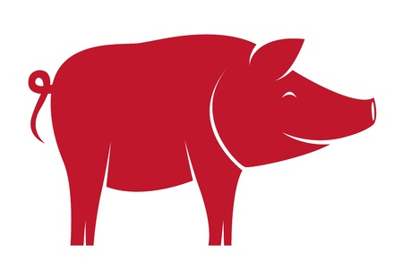 bloated: Vector image of an pig on white background