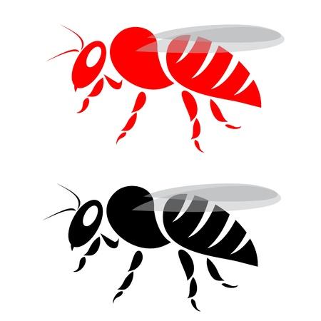 avispa: imagen de la abeja en el fondo blanco