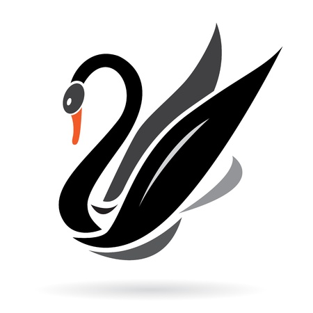 Vector image of swans on a white background  Vector