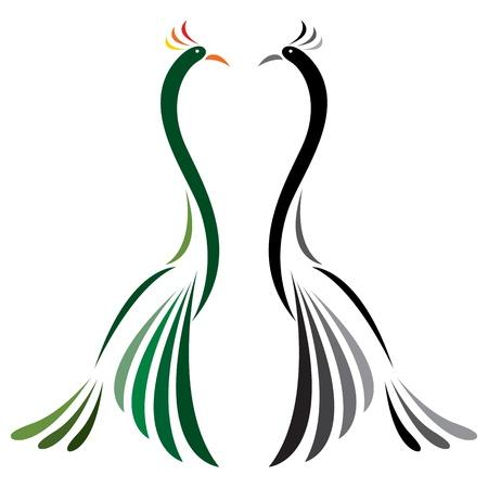 Imagen vectorial de pavo real en un fondo blanco
