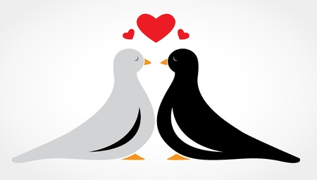 elegant couple: A couple bird falling in love on white background
