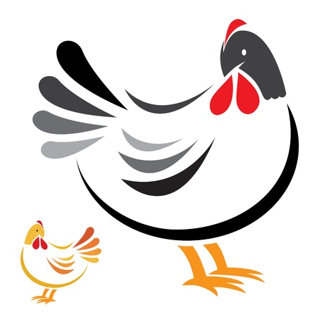cock: image of an hen on white background  Illustration