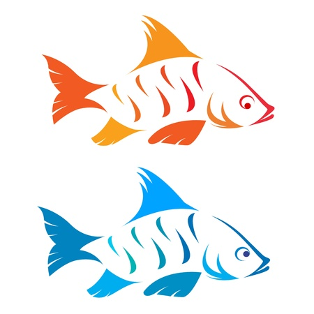 image of an fish on white background  Vector
