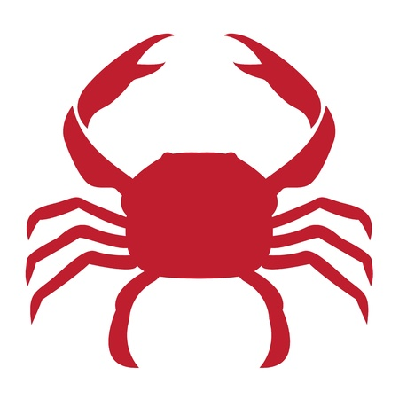 crayfish: image of an crab on white background