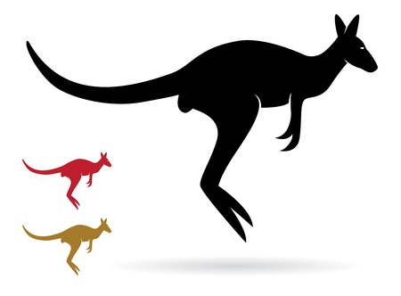 Vector image of an kangaroo on a white background Vector