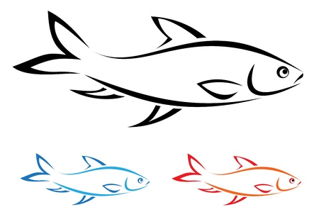 fish silhouette: Vector image of an fish on white background