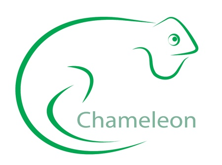 chameleon: Vector image of an chameleon on a white background