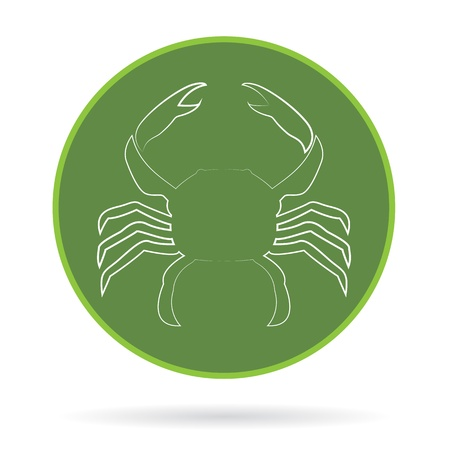 image of an crab , illustration  Vector