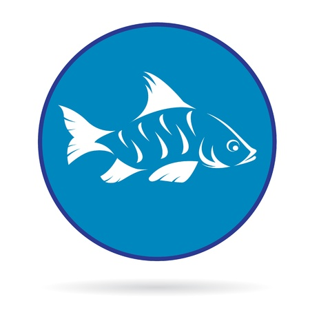 image of an fish  , illustration Vector