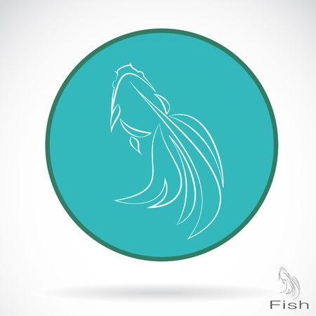image of an goldfish , illustration  Vector