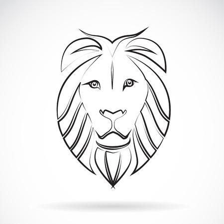 big cat:  image of an  lion , illustration