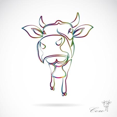 carne de res: Vector de imagen de una vaca en el fondo blanco