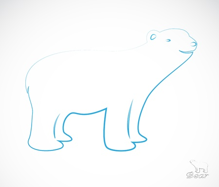 a bear Stock Vector - 19083458