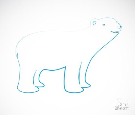 kodiak: un oso Vectores