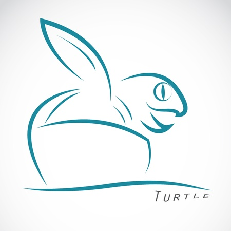 a turtle coming out of the egg Vector