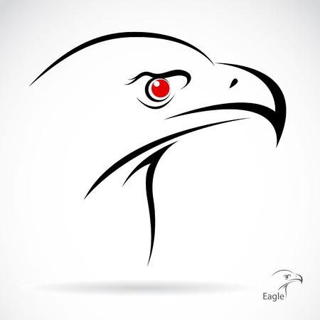 oiseau dessin: Une tête d'aigle sous la forme du tatouage stylisé