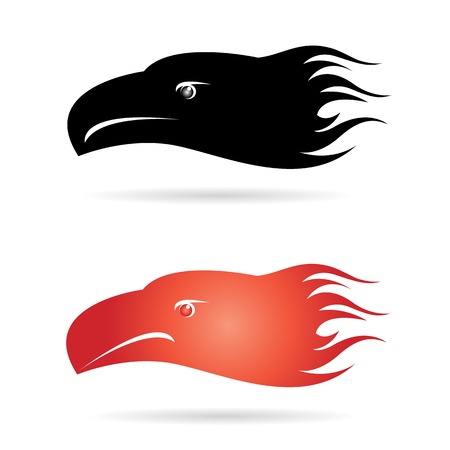 Eagle head. EPS 10 vector illustration Vector