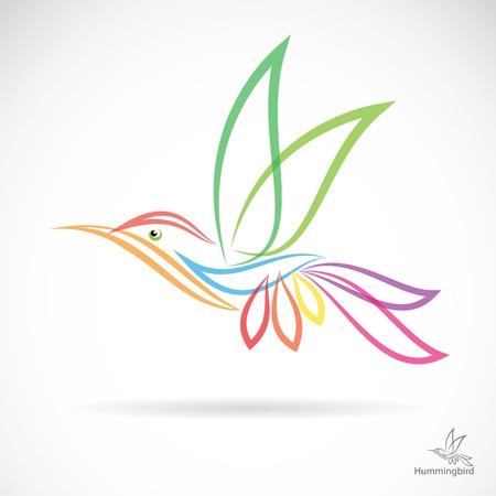 humming: Aislado colibr� resumen en fondo blanco Vectores