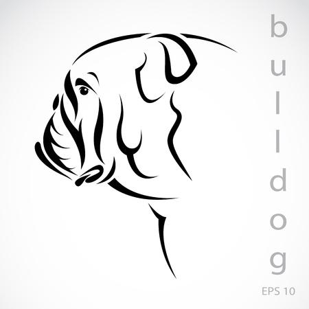 dogo: Vector de imagen de un perro (bulldog) sobre fondo blanco
