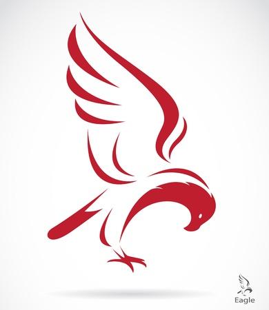 calvo: Vector de imagen de un águila en el fondo blanco