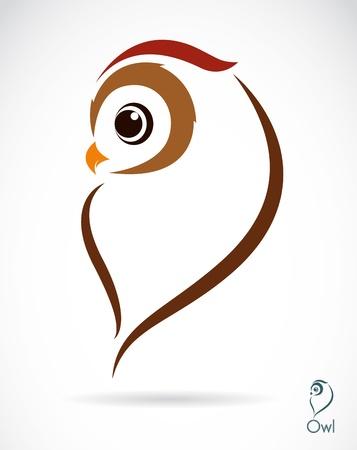 hibou: Vecteur d'image d'un hibou sur fond blanc Illustration