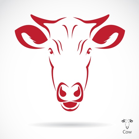 bull's eye: Vector image of an cow head , illustration - vector Illustration