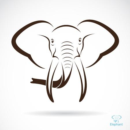 dangerous love: Vector immagine di una testa di elefante, illustrazione - vettore