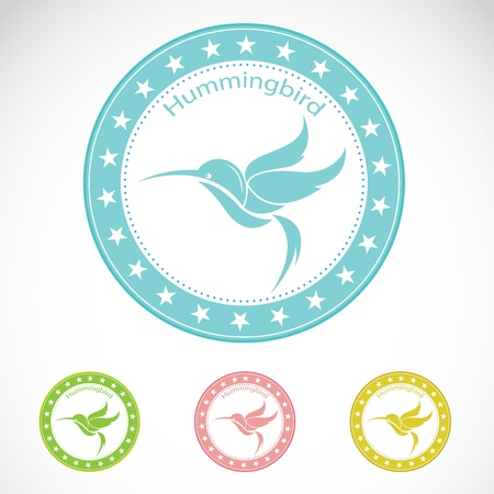 hummingbird: Set of vector hummingbird label on white background Illustration