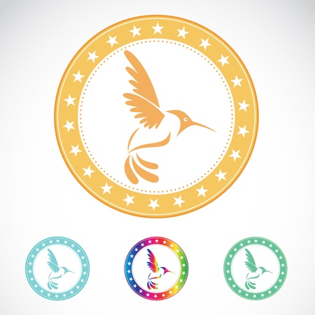 Set of vector hummingbird label on white background Vector