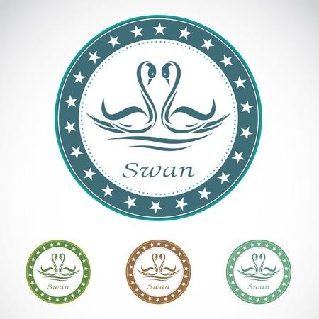 swans: Set of vector swan label on white background  Illustration