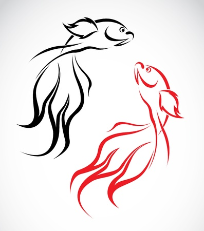 chinese calligraphy: image of an goldfish on white background