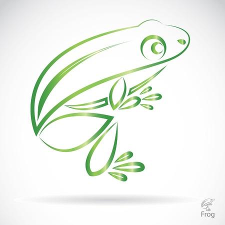 beeld van een kikker op een witte achtergrond