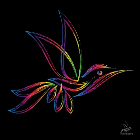 image of an  hummingbird on black background  Vector