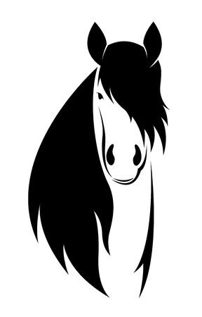 cabeza de caballo: imagen de un caballo sobre fondo blanco