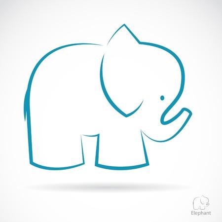 Elefant: Bild von einem Elefanten auf einem wei�en Hintergrund