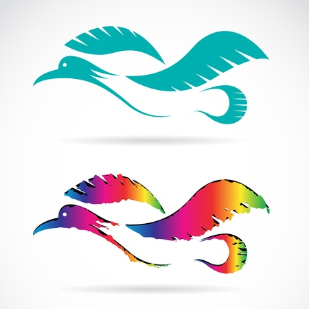 Vector image of an bird on white background 向量圖像
